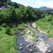 甲州街道を歩く-藤野から野田尻まで その9