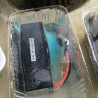リチウムバッテリー塩水着け 電極に青いものが