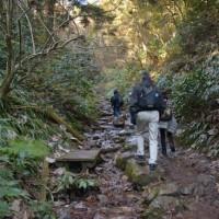 高尾山散歩
