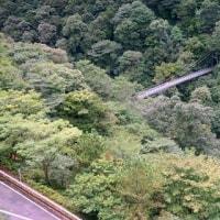 九州旅行 宮崎大吊橋
