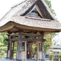 地元のお寺を散策