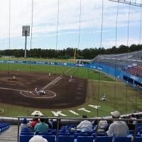 春の高校野球県大会