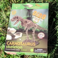 ◎ワゴンセールで恐竜発掘キットを購入。