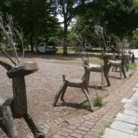 まきば公園~萌木の村