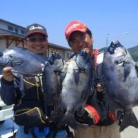 2017年6月17日、18日、19日薩摩川内市中ノ瀬灯台の釣果