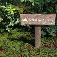 ていうかSIGMA17-70mm F2.8-4