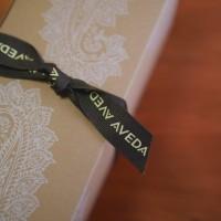AVEDAのパドルブラシ