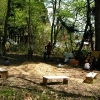 5月3日 にじの森 開催します