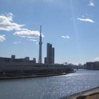 汐入公園からの東京スカイツリー(ならず)