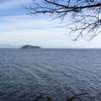 琵琶湖周回ウォーキング(マキノ-永原)