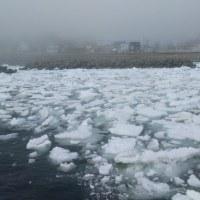 流氷がやってきた