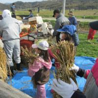 米作り体験~脱穀・精米