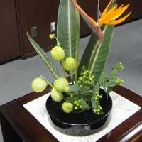 市長室の花(10月17日)
