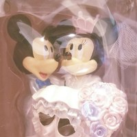 銀婚式のお祝いを、東京ディズニーランドで。