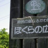 黄砂で霞む大阪平野の景色