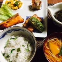 畑の収穫野菜を使ってある日の晩御飯です!