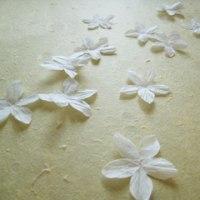 キンモクセイの花となって