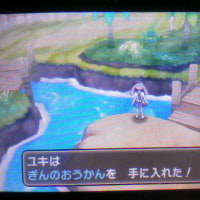 [3DS]ポケモンムーン[No.17]