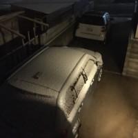 平地でも雪が