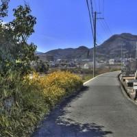 磯壁加守墓地の横から二上山を望む/奈良県葛城市加守