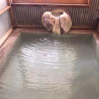 蔵王温泉 フォーレスト蔵王温泉  NO483