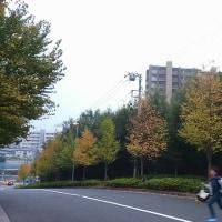 『秋の理由』公開記念 福間健二ブックフェアat僕の部屋