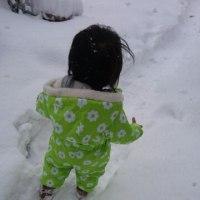 雪のまいにち