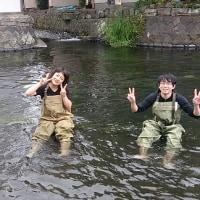 大学の日々 田宿川の実習
