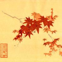 寿堂さんの職人さんの手技が美しい包装紙