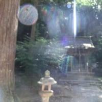 還ってきたレロレロ姫(50)誘惑(8)