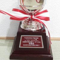 第31回全国中学生東西交流バレーボール大会 優勝 2017,3,27
