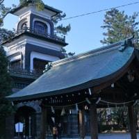 ●尾山神社 ピンクの梅 リュウキンカ(立金花) 神門 拝殿 庭園 図月橋など
