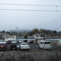 西日本は 大雪だそうで・・