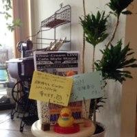 ANNE SHIRLEYで演奏「シュークリーム」清水真弓(Vo)マイルストン石橋(Gt)