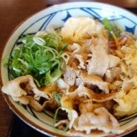 紫陽花と最近の丸亀製麺