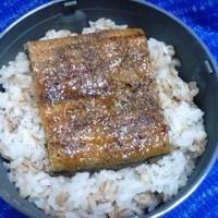 06/27火曜日の弁当は・・・鰻鰻鰻っ!><