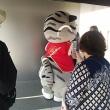 京都国立博物館へ行ってまいりました