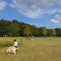 北総花の丘公園