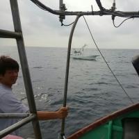 カツオ釣り