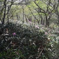 殺生石から日の出平~黒尾谷岳