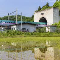 新幹線がゆく奥津軽の地も夏らしい景色へ
