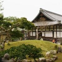 京都 高台寺の桜