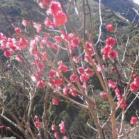 スポコミ・カワラ版 3月24日(金)仏滅