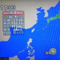 嬉しくない台風1号