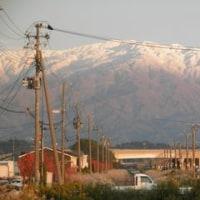 山の頂が3度白くなったが、こちらに雪は降らなかった