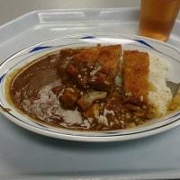 京都府庁に立ち寄って、カレーを食べた