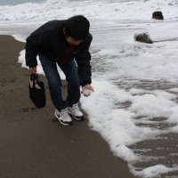 波の花と、へんな大根