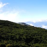 山登ってきました。