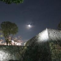 荒城の月 2
