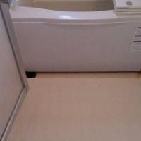 浴室タイルの目地 カビ除去